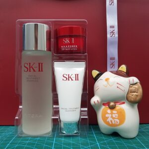 Set SK-II Power Kit