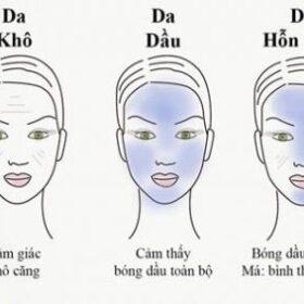 Các loại da