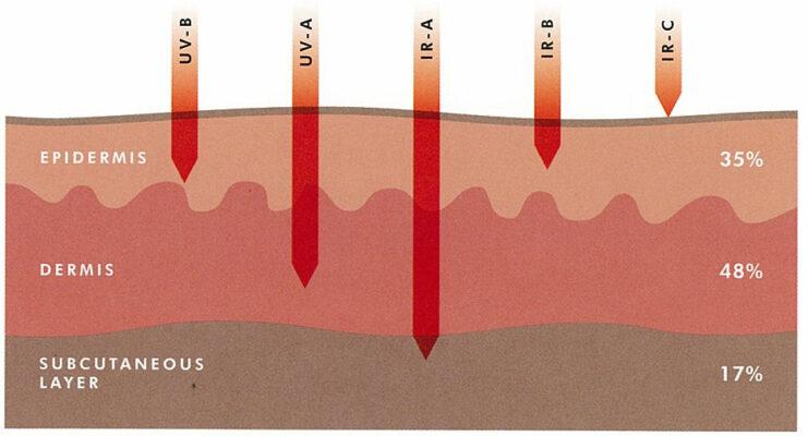 mức độ ảnh hưởng của Tia IR đến da.